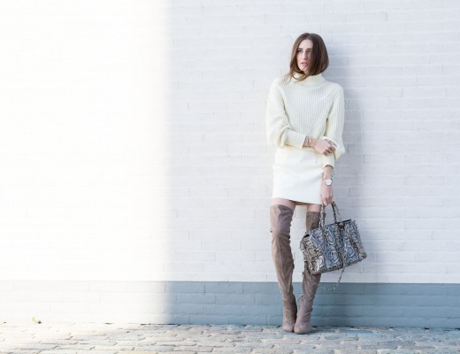American Apparel Winter Whites | Lisa Fiege