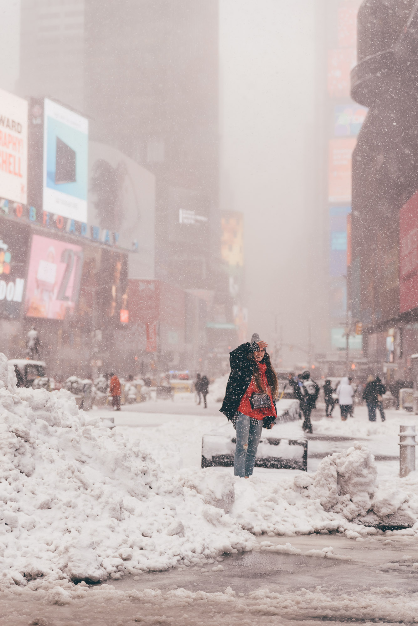 New York Snow Storm | Lisa Fiege