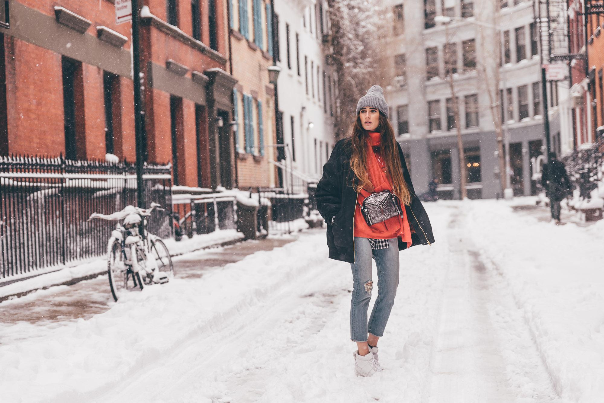 New York Snow Storm | Lisa Fiege