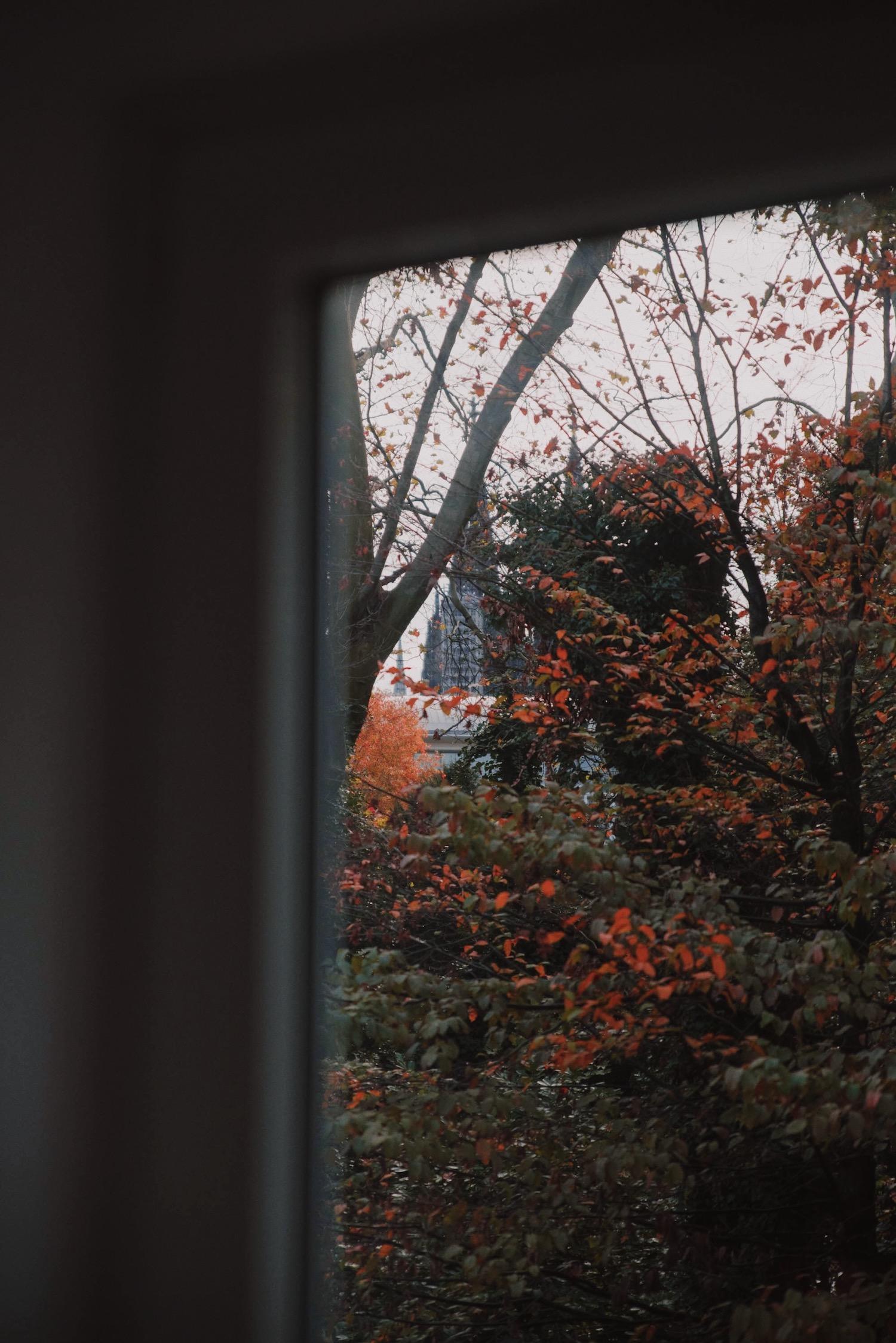 Sunday November | Lisa Fiege | Blog Köln/Cologne